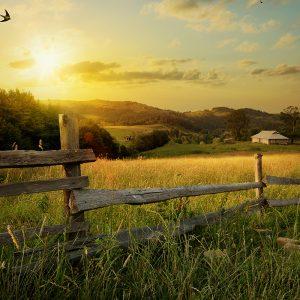imagen-rural-catalunya-argal