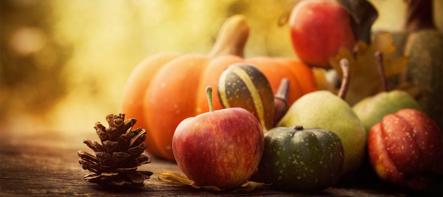 blog-verduras-otoño