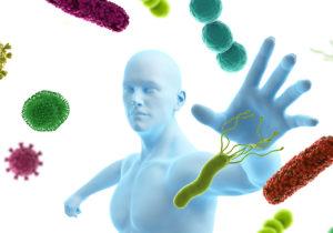 Sistema-Inmune-Blog